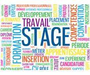 Recherche d'un stage dans le cadre de ma première année de BTS en communication