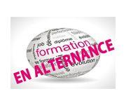 DEMANDE D'ALTERNANCE Négociation et digitalisation de la relation client  (NDRC)